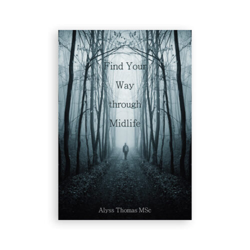 Find your way through midlife ebook